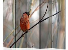 Paraván - Bullfinch in the forest II [Room Dividers]